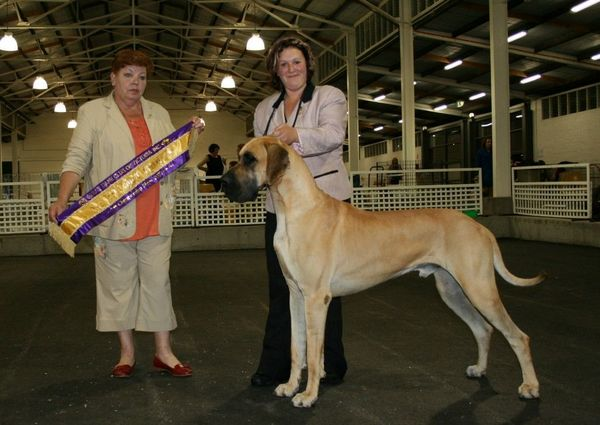Chase - BEST IN SPECIALTY SHOW - November 2007